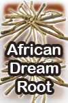 African Dream Root